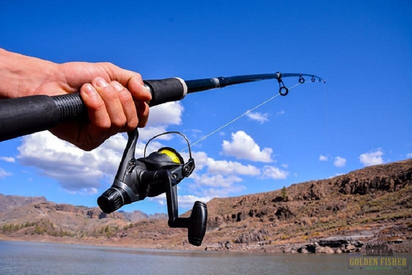 ماهیگیری اسپینینگ